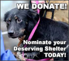 We donate to animal shelters